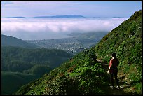 Hiker on Montara Mountain. San Mateo County, California, USA ( color)