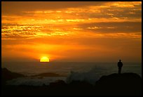 Man watching sunset over ocean. Pacific Grove, California, USA