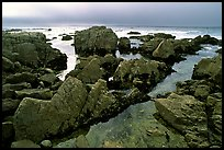 Pool, rocks, foggy sunset, seventeen-mile drive, Pebble Beach. California, USA