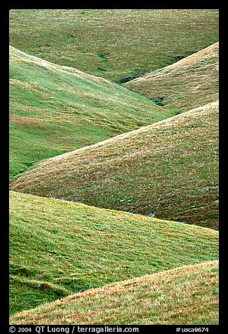 Ridges, Southern Sierra Foothills. California, USA (color)