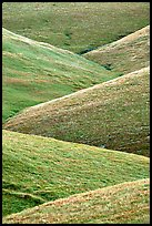 Ridges, Southern Sierra Foothills. California, USA ( color)