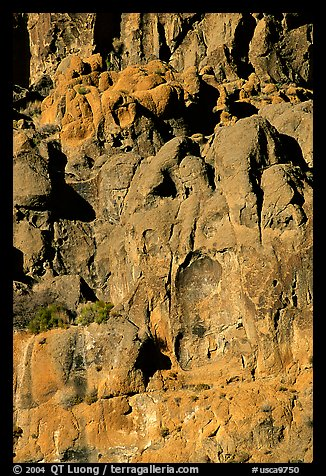Volcanic cliff, Hole-in-the-wall. Mojave National Preserve, California, USA (color)