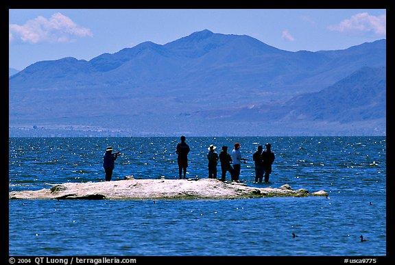 Picture photo fishermen on the shore of salton sea for How much is a fishing license in california