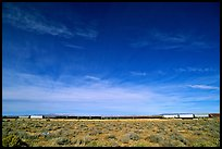Long train in the Mojave desert. California, USA (color)