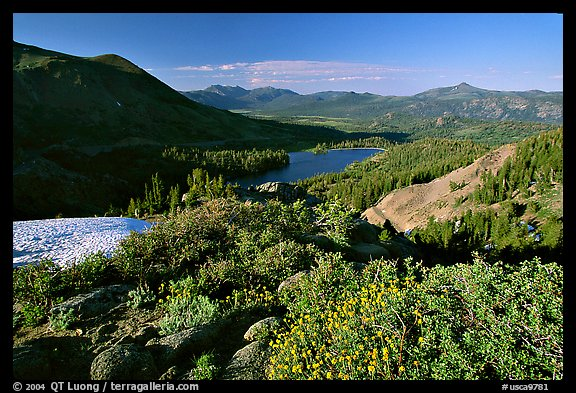 Flowers and Red Lake in the distance, afternoon. Mokelumne Wilderness, Eldorado National Forest, California, USA (color)