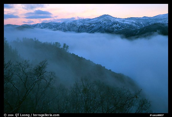 Fog and ridges, sunrise, Stanislaus  National Forest. California, USA (color)