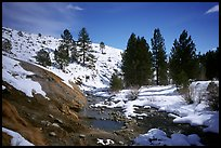 Buckeye Hot Springs in winter. California, USA ( color)