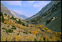 Valley with fall colors, Lundy Canyon, Inyo National Forest. California, USA (color)