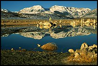 Tufas and Sierra, winter sunrise. Mono Lake, California, USA ( color)