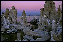 Tufa towers and moon, dusk. Mono Lake, California, USA