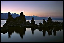 Tufa towers, dusk. Mono Lake, California, USA
