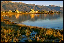 Grasses, tufa, and mountains, early morning. Mono Lake, California, USA