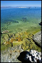Colorful shores, mid-day. Mono Lake, California, USA