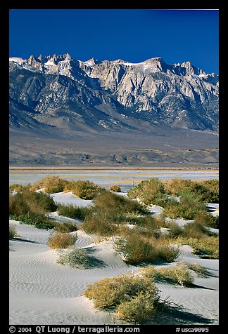 Sierra Nevada Range rising abruptly above Owens Valley. California, USA (color)