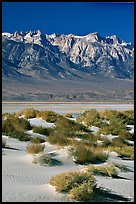 Sierra Nevada Range rising abruptly above Owens Valley. California, USA