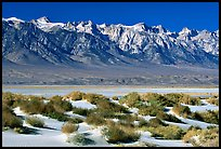 Sierra Nevada mountains rising abruptly above Owens Valley. California, USA (color)
