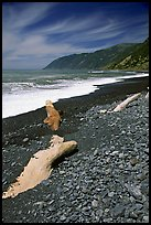 Black sand beach, Lost Coast. California, USA