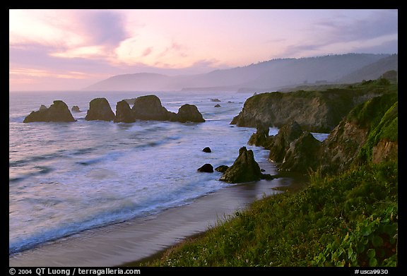 Coast with sea stacks near Rockport. Fort Bragg, California, USA (color)