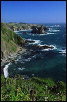 Cliffs and surf near Fort Bragg. California, USA