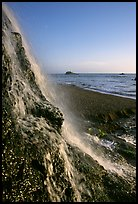 Alamere Falls, afternoon. Point Reyes National Seashore, California, USA ( color)