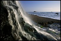 Alamere Falls and beach. Point Reyes National Seashore, California, USA (color)
