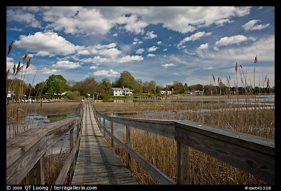 Deck, tall grasses, and river, Old Saybrook. Connecticut, USA (color)