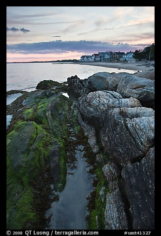 Algae-covered rocks and beach houses, Westbrook. Connecticut, USA (color)