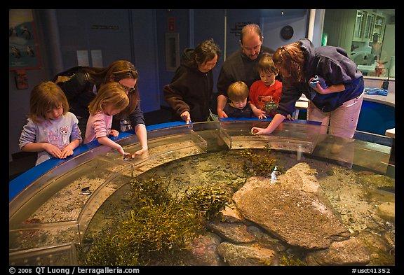... /Photo: Touch pool exhibit, Mystic aquarium. Mystic, Connecticut, USA