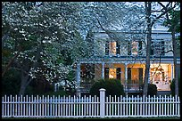 White picket fence, dogwoods, and house at dusk, Old Lyme. Connecticut, USA ( color)