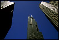 Upwards view of sears tower framed by other skyscrappers. Chicago, Illinois, USA ( color)