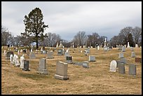 Lawn cemetery. Salem, Massachussets, USA ( color)