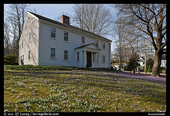 Historic house with early blooms in front yard, Sandwich. Cape Cod, Massachussets, USA (color)