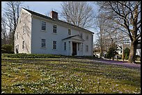 Historic house with early blooms in front yard, Sandwich. Cape Cod, Massachussets, USA ( color)