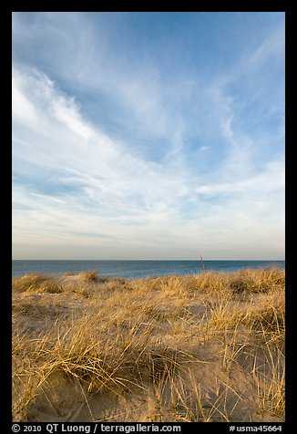 Dunegrass and clouds, Race Point Beach, Cape Cod National Seashore. Cape Cod, Massachussets, USA (color)