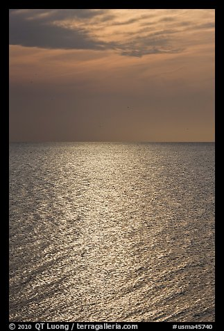 Shimmering water, Cape Cod Bay, Cape Cod National Seashore. Cape Cod, Massachussets, USA (color)