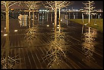 Tree reflections on wet boardwalk. Boston, Massachussets, USA ( color)