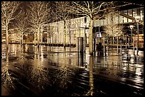 Trees reflected on boardwalk, and modern building at night. Boston, Massachussets, USA ( color)