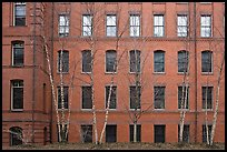 Facade of brick building, Harvard University, Cambridge. Boston, Massachussets, USA
