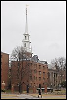 Spire on rainy day, Harvard University Campus, Cambridge. Boston, Massachussets, USA (color)