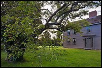 Tree and Samuel Brooks House, Minute Man National Historical Park. Massachussets, USA (color)