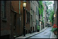 Narrow street on Beacon Hill. Boston, Massachussets, USA ( color)