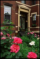 Flowers and brick houses on Beacon Hill. Boston, Massachussets, USA ( color)