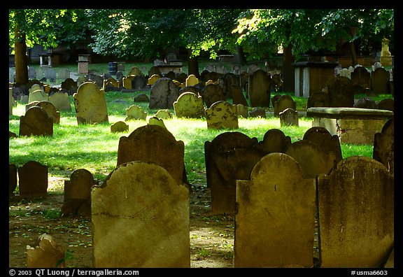 Old headstones in Copp Hill cemetery. Boston, Massachussets, USA (color)