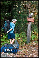 Backpacker shouldering pack at trailhead. Maine, USA