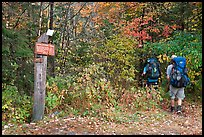 Backpackers hiking into autumn woods at Appalachian trail marker. Maine, USA ( color)