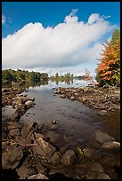 Stream, trees in autumn foliage, Beaver Cove. Maine, USA