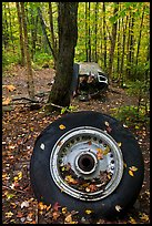 Wheel and fuselage part from crashed B-52 in forest. Maine, USA ( color)