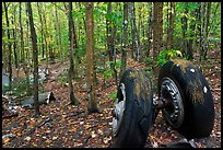 Landing gear of crashed B-52 in woods. Maine, USA (color)