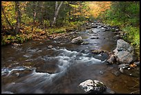 Stream in autumn near Elephant Mountain. Maine, USA