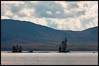 Islets with conifers, Moosehead Lake, Lily Bay State Park. Maine, USA